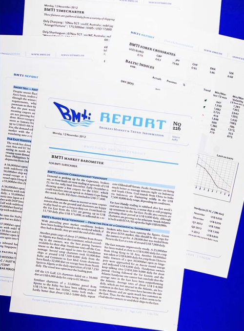 bmti report sample